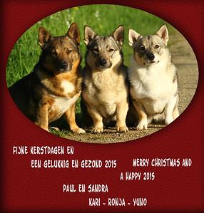 3Spetsen_Kerstkaart