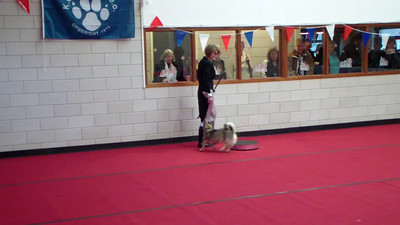 Video Ronja NK The Entertainer (1)