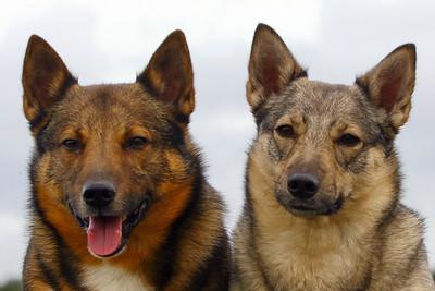 Kari en Ronja 2011