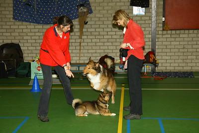 Clicker Challenge 2006 met Gerda en Schotse Collie Dorus