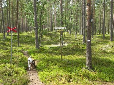 Vakantie Zweden 2006