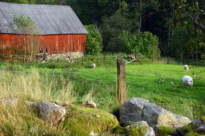2011-09-25_7264