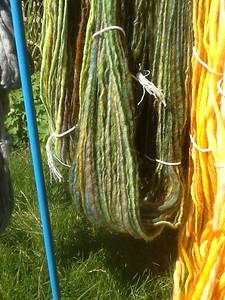De groene strengen later, 1 op spintol, 1 op spinnewiel
