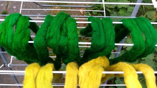 Groene strengen mèt voorbeits