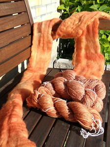 Het resultaat: middelste 2 strengen uit 1e experiment solar dyeing. Voorste streng uit pot met duizendblad: meer oranje en gevarieerder dan wol uit 1e experiment. De lontwol komt uit de 2e pot, met symphytum en zuring. Net zo gevarieerd, nog iets meer oranje dan duizendblad-pot.