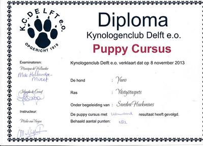 IMG_0001_diploma