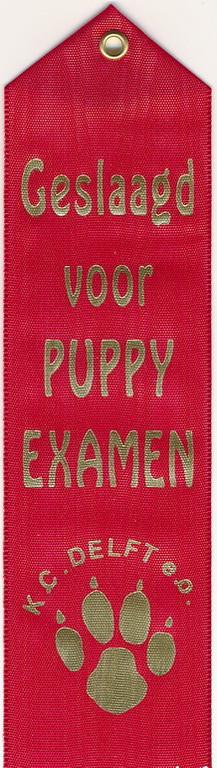 Yuno's diploma