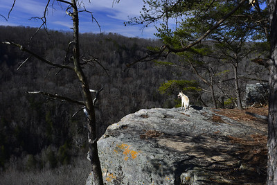 Werner's Point in Grundy County, Tennessee