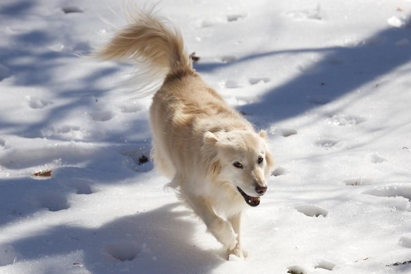 Loving the Winter
