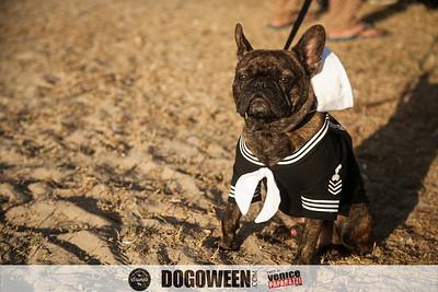 Venice Dog-O-Ween-72