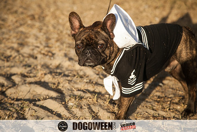 Venice Dog-O-Ween-71