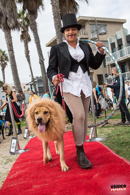 Venice Dog-O-Ween. Photos sponsored by www.BrunosVenice.com.  Red carpet and photos by www.VenicePaparazzi.com.