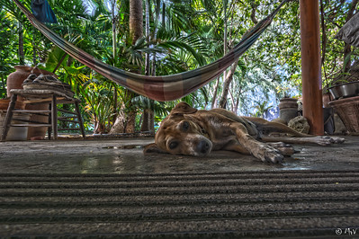 The girls in HDR and a wide angle lens