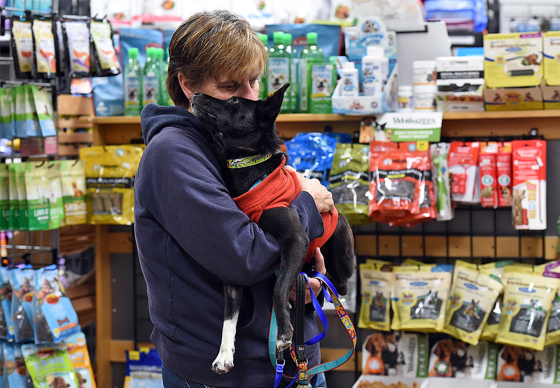 Lisa Sauer, co-owner of Hank's Pet Food Market, hugs her newly adopted dog, Suni, on Monday, Nov. 6, 2017, at the store in Loveland. Suni is one of 11 dogs who were brought here from Nepal for a better life and Hank's helped with the cost to bring six of the dogs here. (Photo by Jenny Spars/Loveland Reporter-Herald)