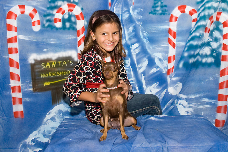 This Miniature Pinscher and her friend pose for their Christimas photo.  The Min Pin is owned by Natassia Chong.