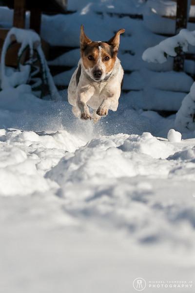 2009-03-01.more snow.179-2-20