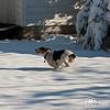 2009-03-01.more snow.054-2-6