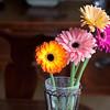 Flowers (73 of 78)