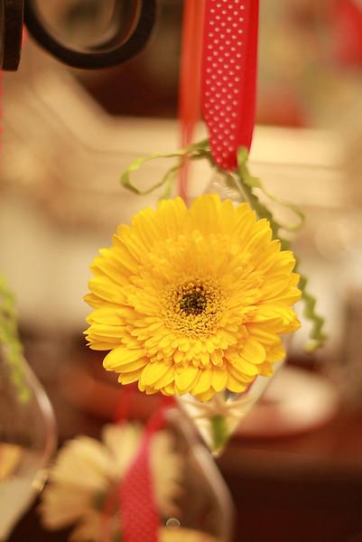 Flowers (15 of 78)