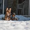 2009-03-01.more snow.185-2-23