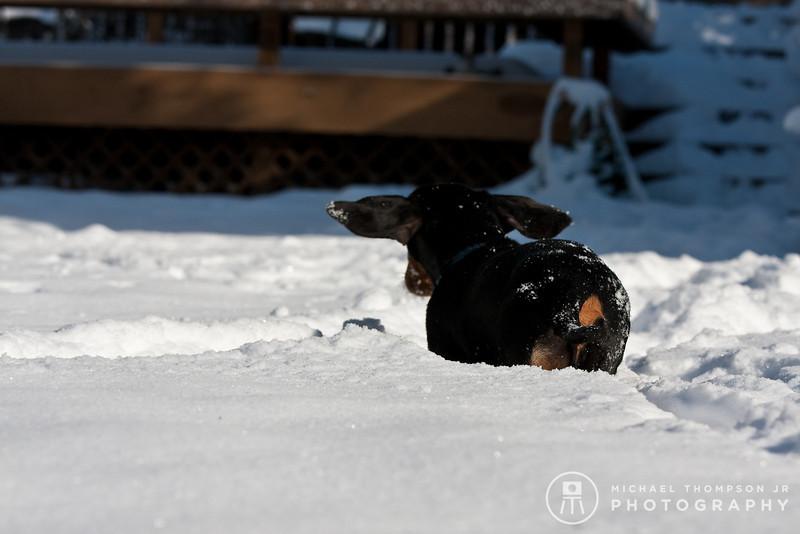 2009-03-01.more snow.136-2-13