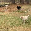Winnie and Fred