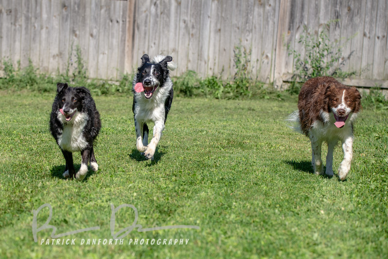 Trixy, Cash and Aksel