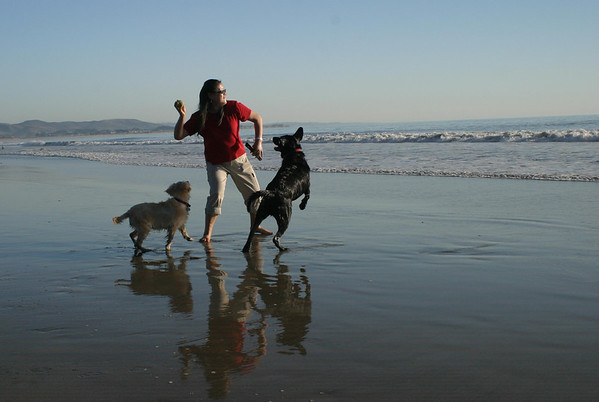Fuzz, Maximus and mom<br /> Half Moon Bay, CA