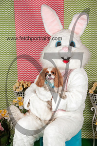 dogaholics_easter_2014 188