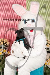 dogaholics_easter_2014 061