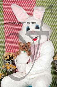dogaholics_easter_2014 181