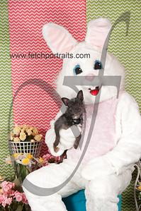 dogaholics_easter_2014 038