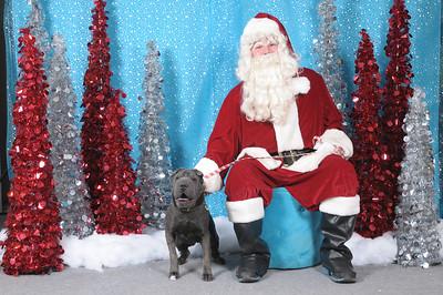 Dogaholics Santa 2013 144