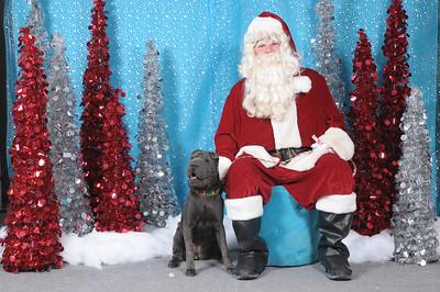 Dogaholics Santa 2013 140