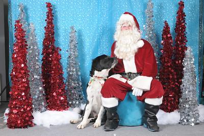 Dogaholics Santa 2013 136