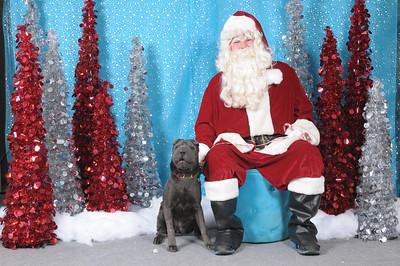 Dogaholics Santa 2013 143