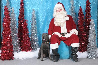 Dogaholics Santa 2013 142