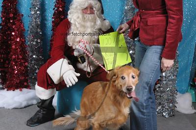 Dogaholics Santa 2013 Sunday 101