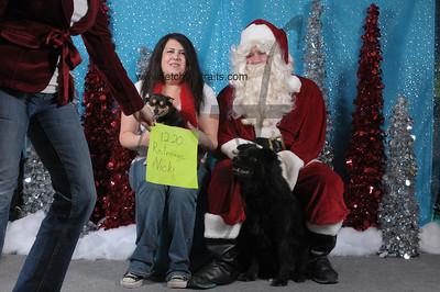Dogaholics Santa 2013 Sunday 166