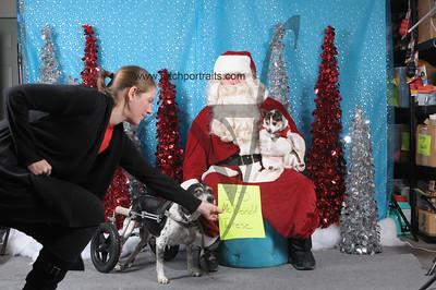 Dogaholics Santa 2013 Sunday 086