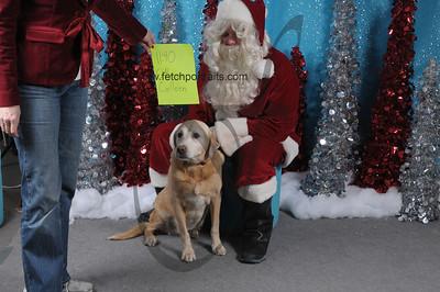 Dogaholics Santa 2013 Sunday 123