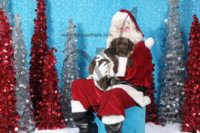 Dogaholics Santa 2013 191