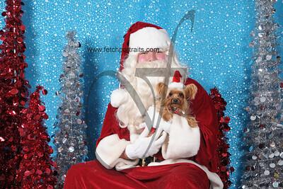 Dogaholics Santa 2013 421