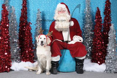 Dogaholics Santa 2013 265