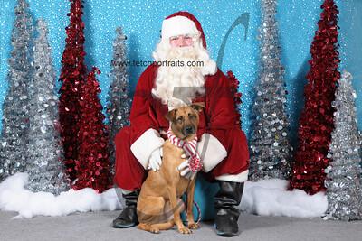 Dogaholics Santa 2013 394
