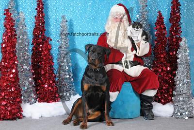Dogaholics Santa 2013 167 copy