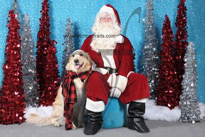 Dogaholics Santa 2013 229
