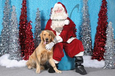 Dogaholics Santa 2013 314