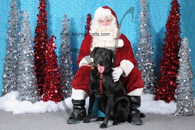 Dogaholics Santa 2013 306