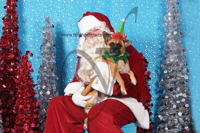 Dogaholics Santa 2013 385